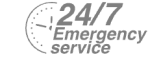 24/7 Emergency Service Pest Control in Caterham, Chaldon, Woldingham, CR3. Call Now! 020 8166 9746