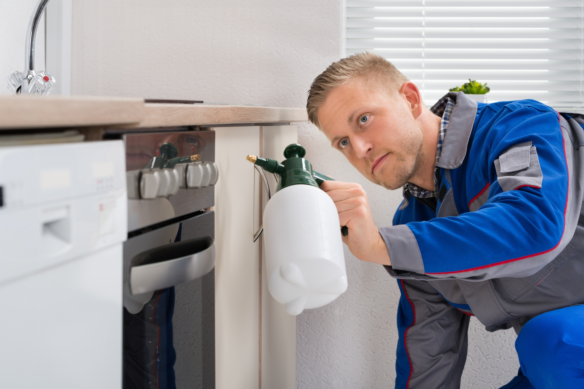 Pest Inspection, Pest Control in Caterham, Chaldon, Woldingham, CR3. Call Now 020 8166 9746